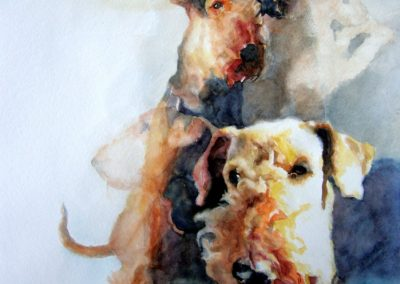 1382 Airedale-Terrier Aquarell