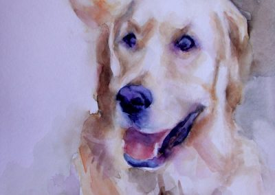 1317 Golden Retriever Aquarell