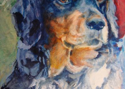 1348 Border Collie Auszug Acryl