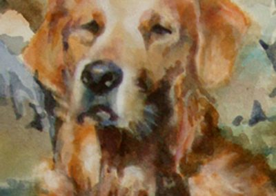 1370  Golden Retriever Auszug Aquarell